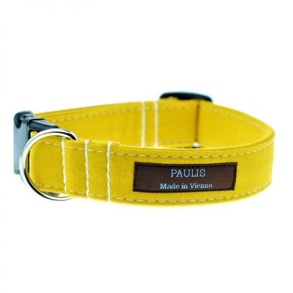 Hundehalsband von Paulis Hundeausstatter | Loden | gelb