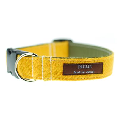 Hundehalsband von Paulis Hundeausstatter | Harris Tweet| gelb-gruen