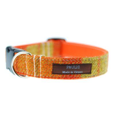 Hundehalsband von Paulis Hundeausstatter | Harris Tweet| gelb-orange