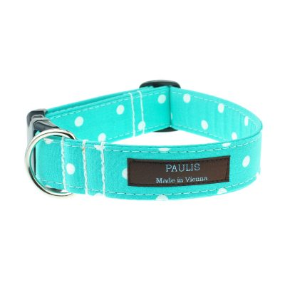 Hundehalsband von Paulis Hundeausstatter | Polka-Dots-Muster | tuerkis